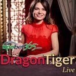 Tipobet365 sitesinde dragon tiger kart oyunu nasıl oynanır ?